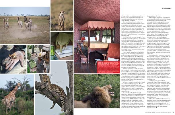 International Traveller_Botswana Safari-2
